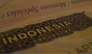 Indo passport