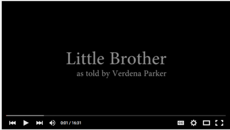 Little Brother Story