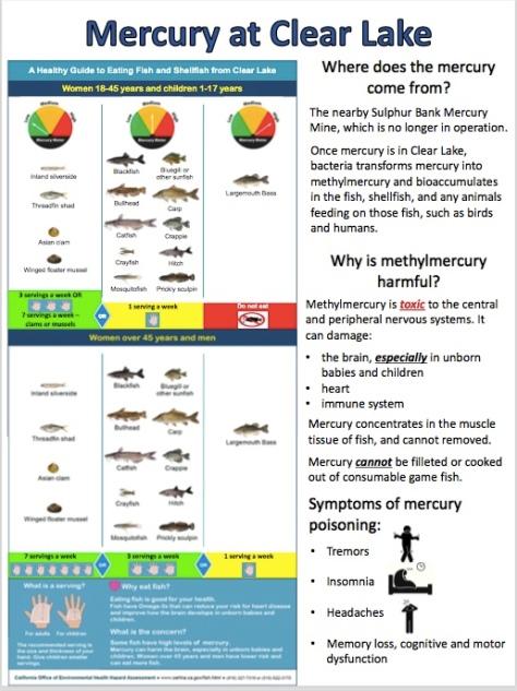 Cyanotoxin poster Page 1
